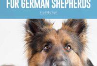 1517662271 Best Dog Food For German Shepherds 14 Vet Recommended Brands.jpg